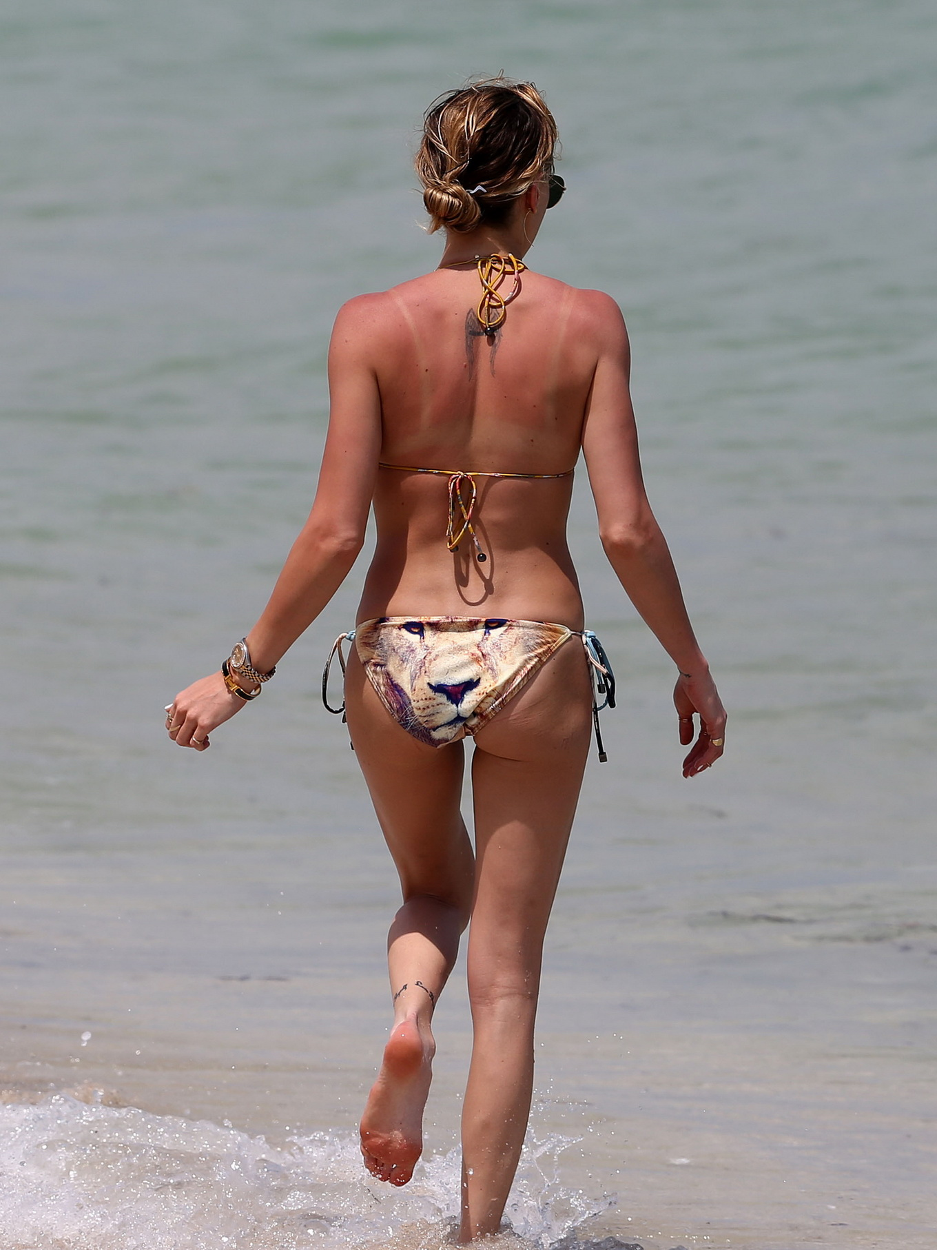 hispanic katie cassidy ass
