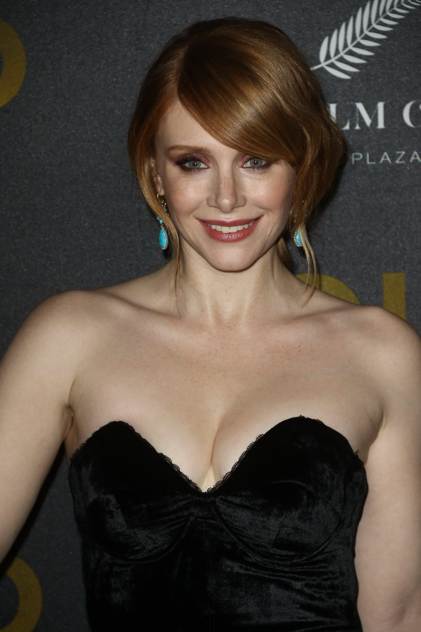 Who is bryce dallas howard dating 2